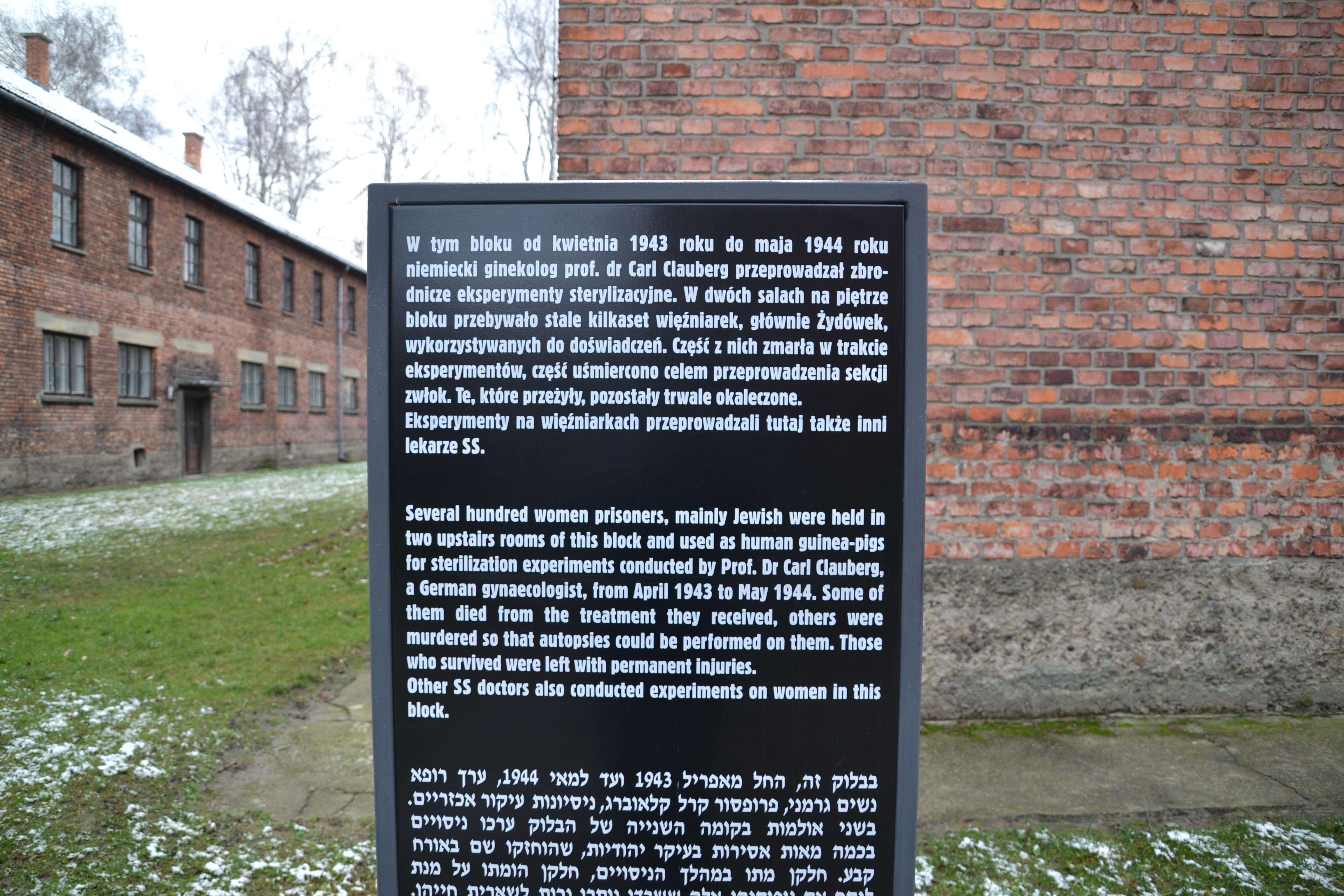 Block 10 Auschwitz