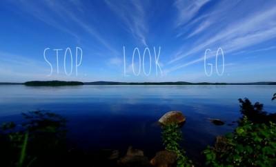 stop look go