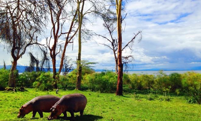 How to get from Nairobi to Lake Naivasha