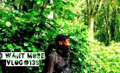Eburru Forest hiking