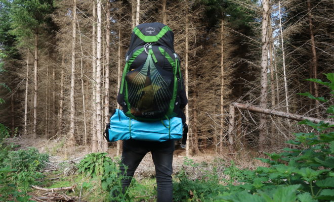 Adventurer Going into the Woods