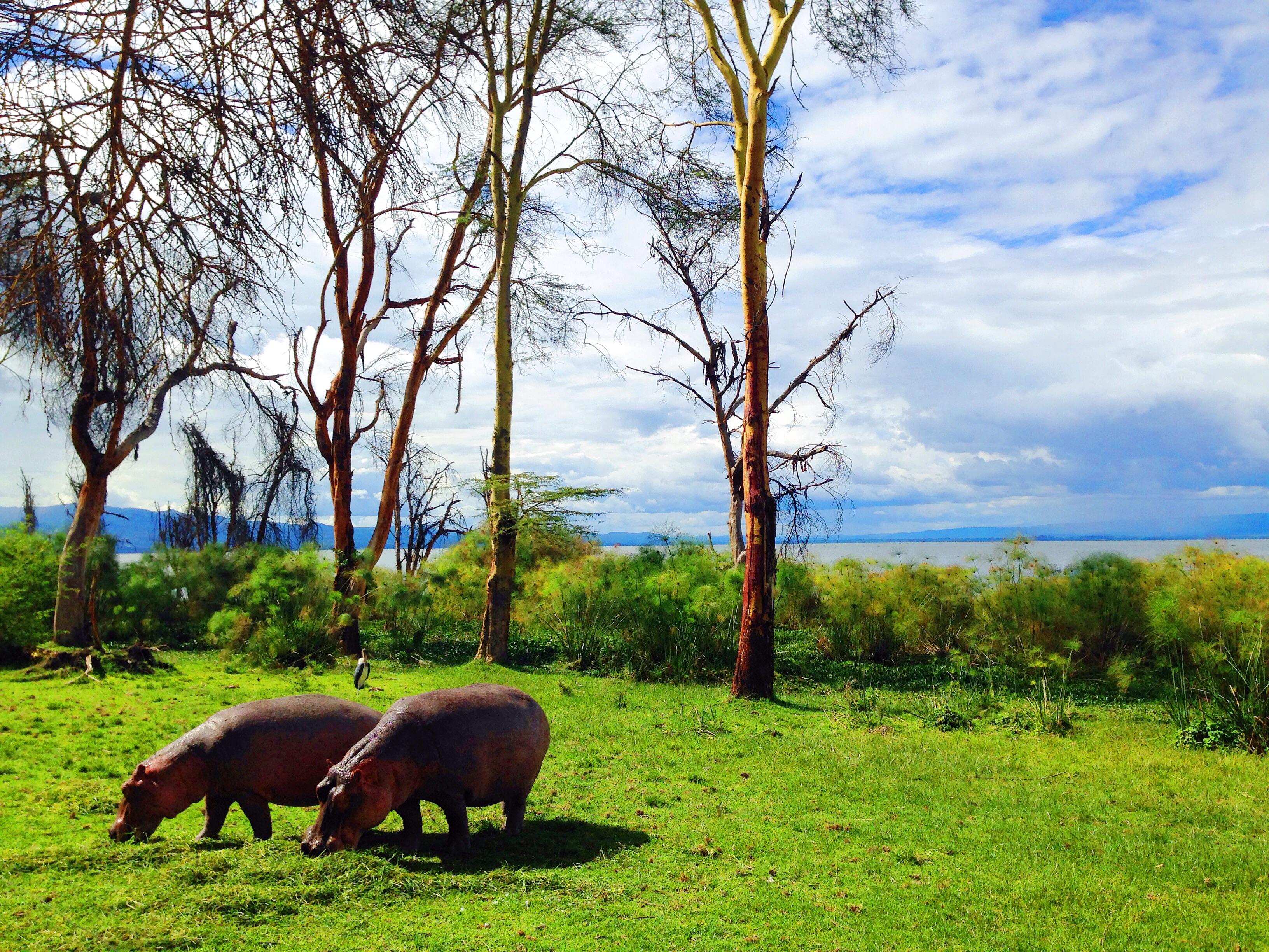 Microadventure Kenya